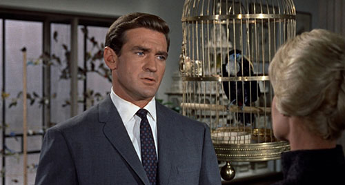 rod-taylor-the-birds